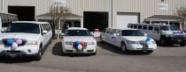 limo fleet